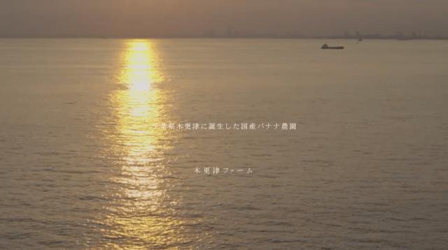 Film Director / 劉輝 /RYUUKI LIU | atelier24b